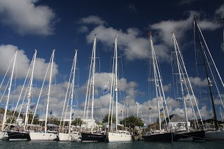 Oyster yachts lined up in ANtigua