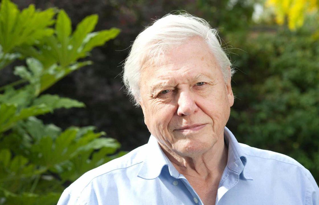 A photo of Sir David Attenborough